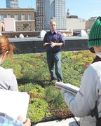 Green roof in Hartford