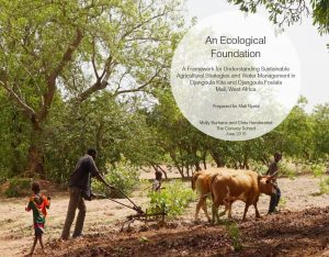 Cover of Mali project